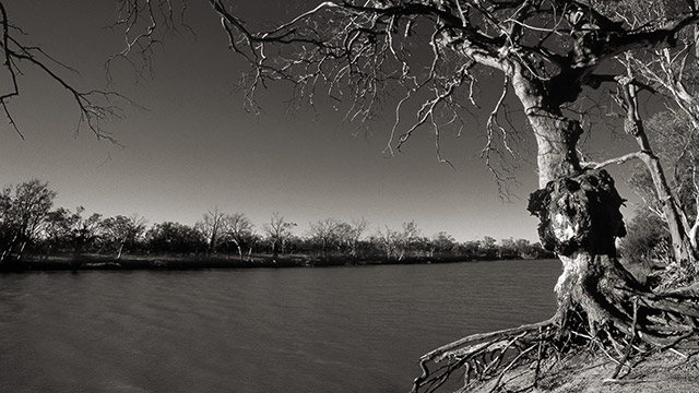 Murray River New South Wales Australia by Boris Vargovic, free photo, wallpapers, images