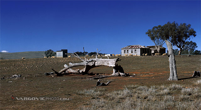Colors-Of-Aussie-Winter_Australia_New-South-Wales_Ship_Australian-Farm_Down-Under_Vargovic-Photo