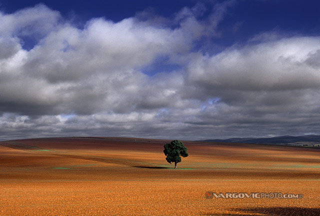 Me-And-My-Shadow_Australia_New-South-Wales_Red-Land_Vargovicphoto.jpg