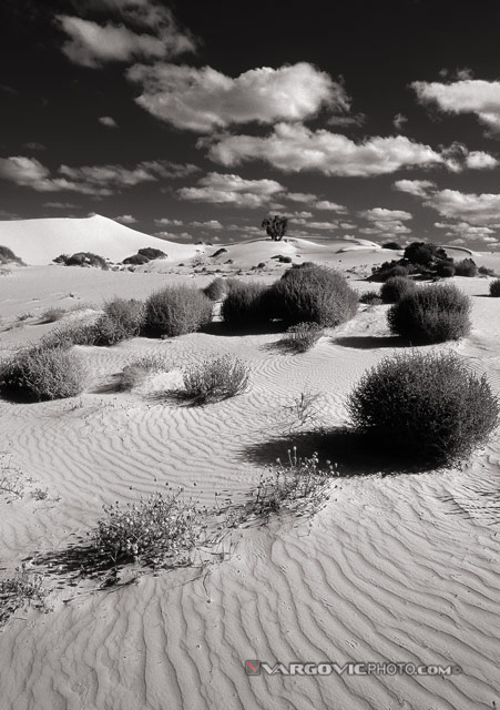 Some-Day-Without-Worries_Mungo_Desert_Mungo-Lake_Australia_Vargovic-Photo