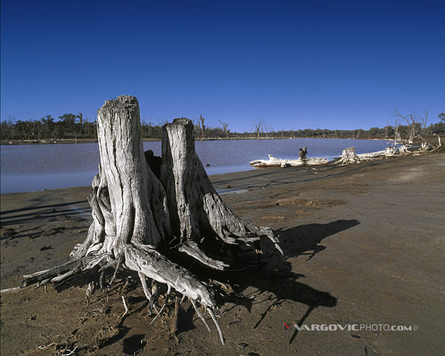 Thinking-About-River_Australia_Murray-River_Down-Under_Mildura_Iryimple_Vargovicphoto