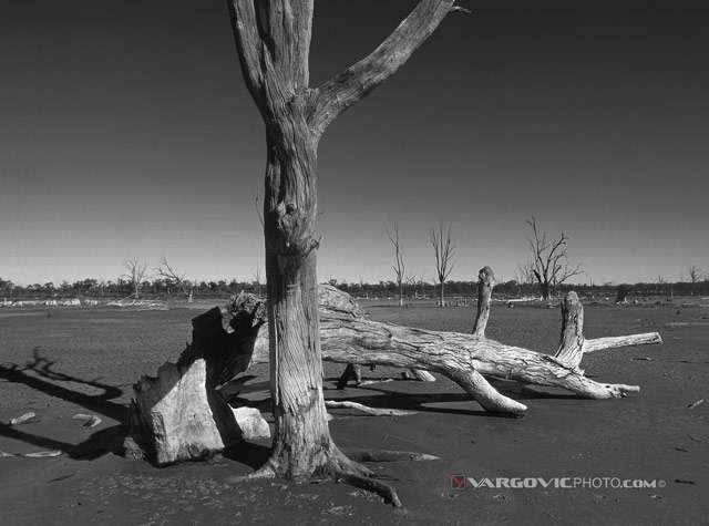Waiting-For-River-Australia_Murray-River_Down-Under_Mildura_Iryimple_Kings-Billabong_Vargovic-Photo