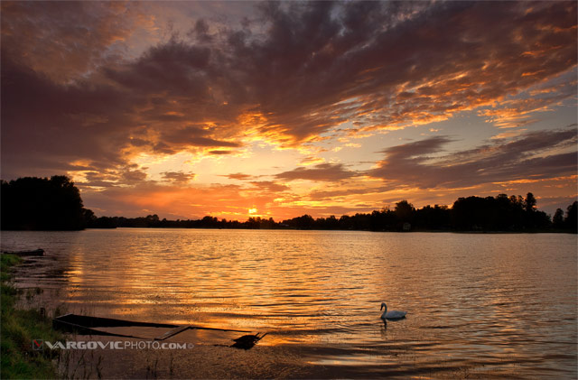 I-Would-Rather-Be-Alone_Soderica-Lake_Podravina_Croatia_Red-Sky_Swan_Vargovic-Boris