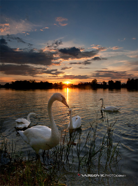 In-Love-With-Day's-End_Soderica-Lake_Podravina_Croatia_By-Boris-Vargovic-Fine-Art-Photography