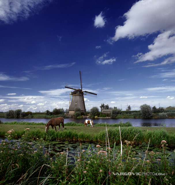 Undo-My-Inspiration_Kinderdijk_Holland_The-Netherlands_Dutch-South_Horses_Windmill-On-The-Water_By-Boris-Vargovic