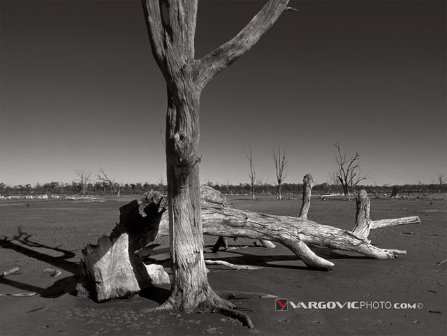 Waiting-For-River-Australia_Murray-River_Down-Under_Mildura_Iryimple_Kings-Billabong_Vargovic-Photo_Sepia
