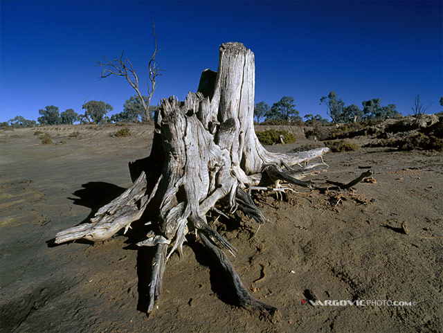 World-Without-End_Australia_Murray-River_Mildura_Kings-Billabong_Irymple_Vargovic-Photography