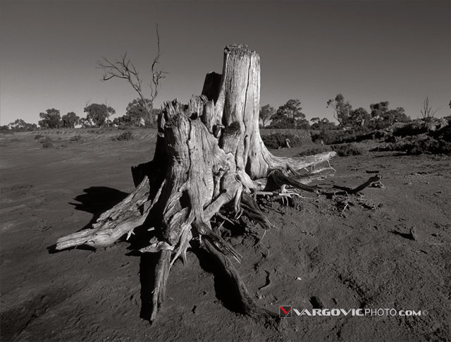 World-Without-End_Australia_Murray-River_Mildura_Kings-Billabong_Irymple_Vargovic-Photography_Sepia