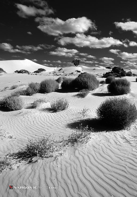 lost-In-Desert_Australia_New-South-Wales_Dreamtime_Aborigines_Mungo-Lake_Down-Under_Vargovic-Photo_Bw
